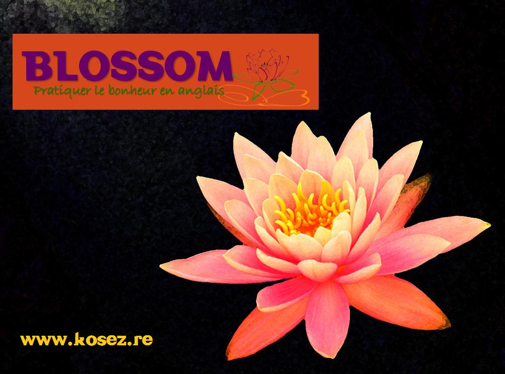 Logo BLOSSOM2
